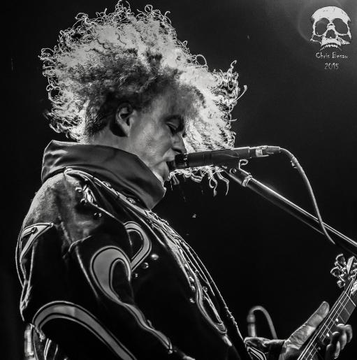 Melvins 14