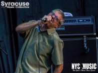 chris-besaw-riot-fest-day-2-descendents-14