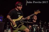 Jake Previte Good Tiger-4