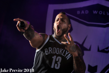 Jake Previte Bad Wolves 7