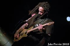 Jake Previte Fever 333 7